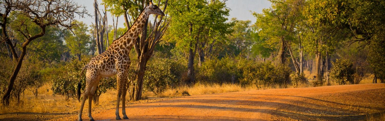 Unit-slider-le-meilleur-de-l-afrique-australe-9